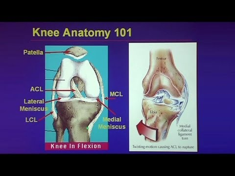 Common Traumatic Knee Injuries: Oh My Aching Knee