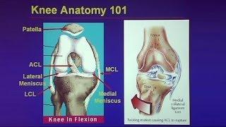 Common Traumatic Knee Injuries: Oh My Aching Knee