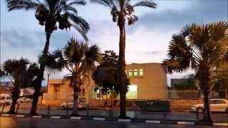 מבט גורלי\ מאת אושר חיים אילוז - Of Osher Chaim Iluz/Dustend Look