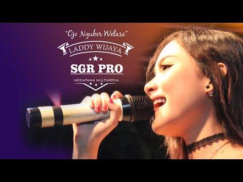 Ojo nguber welase - LADDY WIJAYA (SGR Pro)