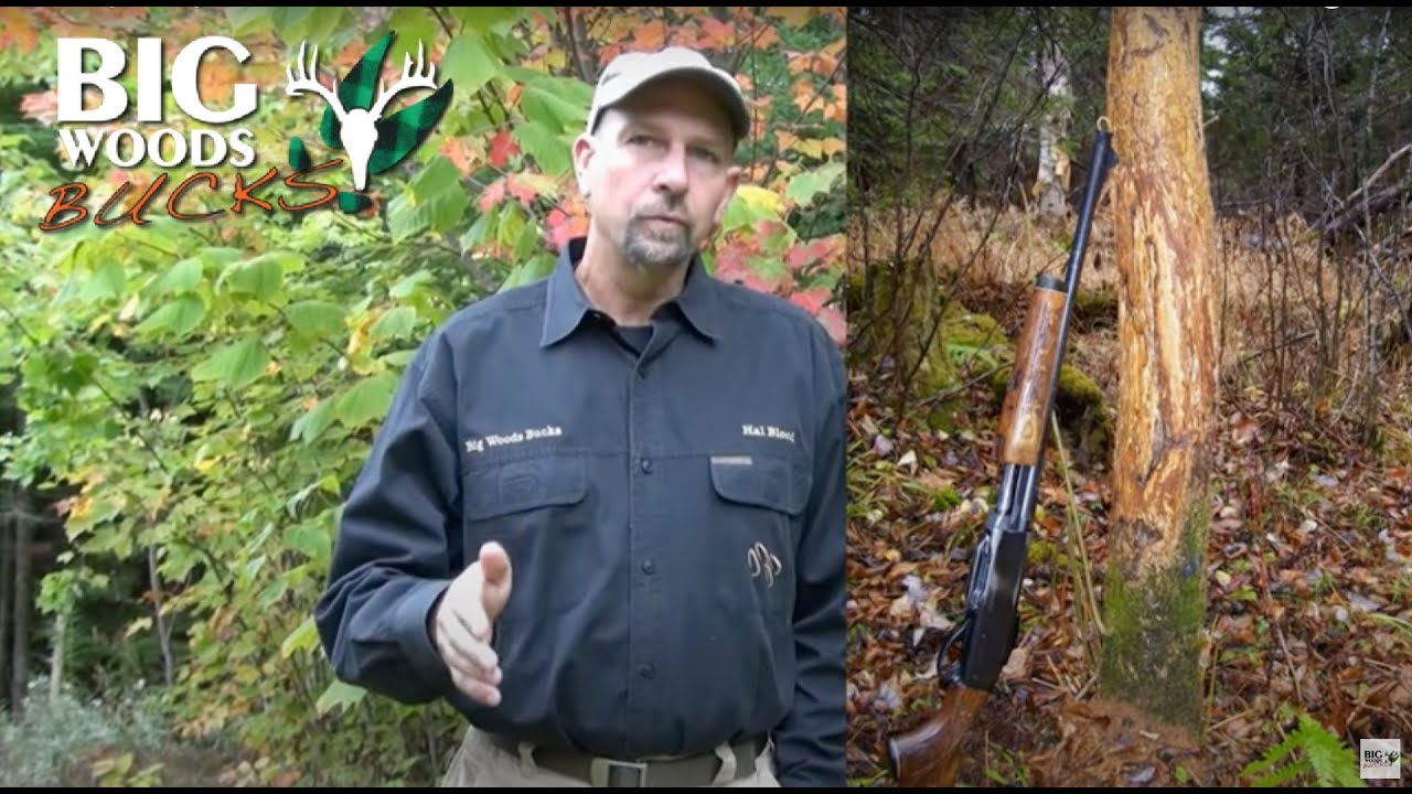 237eaecd98365 Scouting for Big Woods Bucks with Hal Blood - YouTube