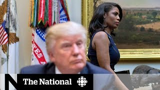 Trump calls Omarosa a 'dog' in latest insult