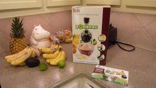 Yonanas Healthy Dessert Maker Review - Yonanas Frozen Treat Maker - Antioxidant-fruits