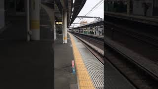 E253系1000番台特急日光 赤羽駅通過シーン