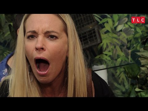 Kate Bugs Out At The Insectarium | Kate Plus 8