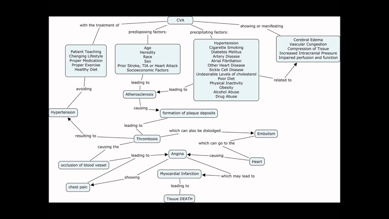 CVA concept map discussion by A.M.DeC.wmv   YouTube