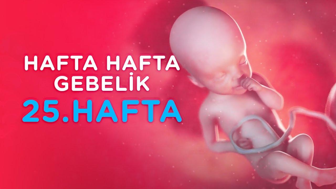 Hamilelikte 25. Hafta - Hafta Hafta Gebelik | İlk Adımlarım