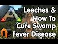 watch he video of Ark: Survival Evolved - HOW TO CURE SWAMP FEVER/DISEASE/LEECHES!