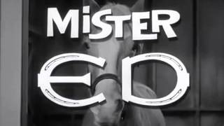 "Mr. Ed "" The Talking Horse "" Intro  (1961–1966)"