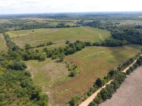 Anderson - Jefferson County, Iowa Land Auction - 156± Acres - Two Tracts