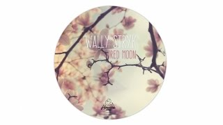 Wally Stryk - Red Moon [Hermine Records 046]