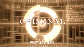 [Free] Lil Pump ft. Smoke Purp Type Beat 'CRIMINAL' Dark Banger Type Beat