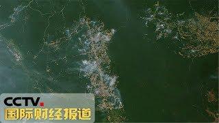[国际财经报道]热点扫描 南美多国将协商保护雨林 巴西接受外国援助用于灭火| CCTV财经