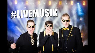Coverband THE NEW HORNETS | Musik von ELVIS bis EMINEM