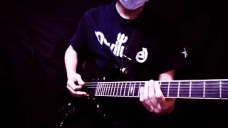 GUNDOG/SUN FOREVER Guitar Cover