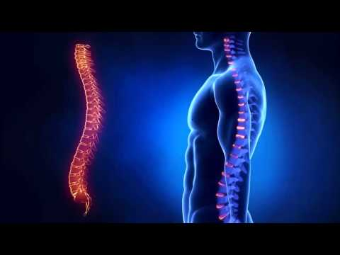Остеохондроз шейного отдела позвоночника › Болезни