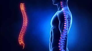 Остеохондроз | Как лечить шейный остеохондроз | Cимптомы и лечение всех видов остеохондроза(http://pandadoma.ru/osteohondroz/ Остеохондроз - лечение шейного отдела при остеохондрозе. У вас периодически побаливает..., 2014-06-22T08:50:03.000Z)