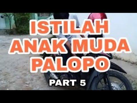 ISTILAH ANAK MUDA PALOPO Part 5