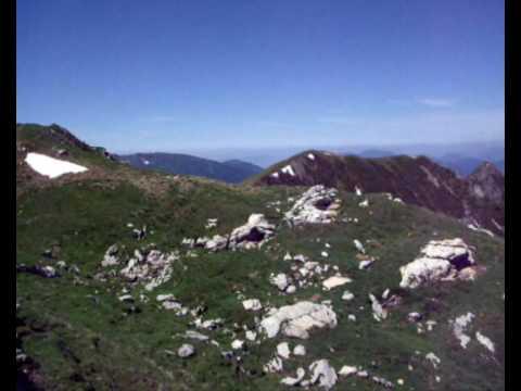 Niardo - Malga Campadelli - Alta Guardia - Malga Ferone (14/6/09)