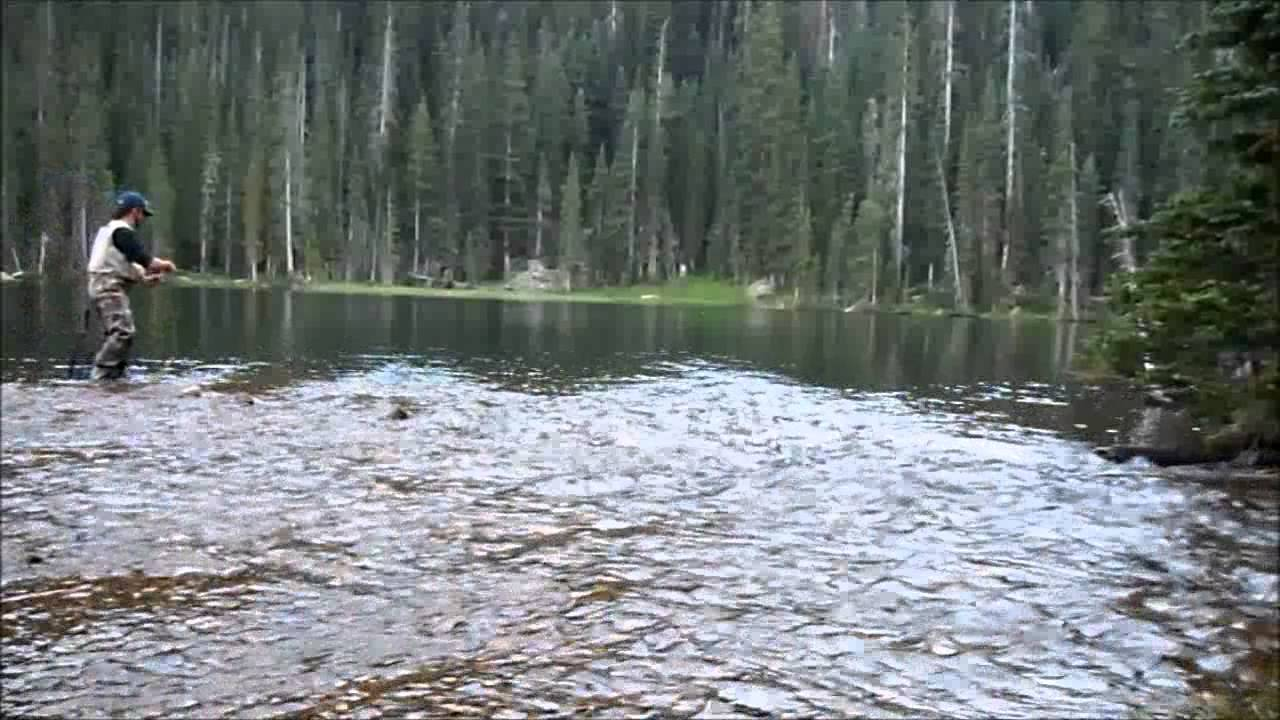 Rocky mountain national park greenback cutthroat fly for Colorado out of state fishing license
