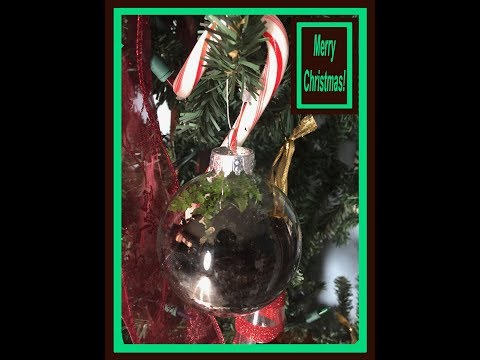 Christmas Ornament Terrariums Build: 12/25/2017