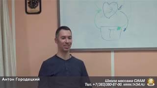 А. Городецкий - Основы ТОП (Презентация) 5 июня 2019