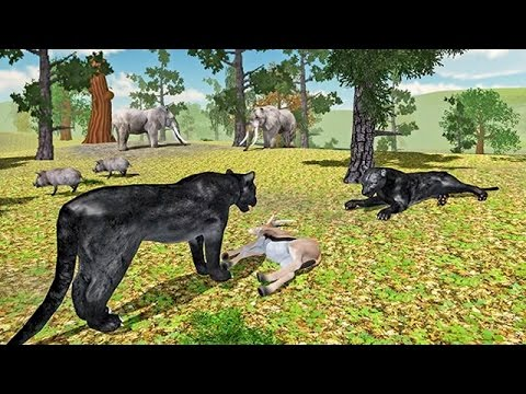 Furious Panther Simulator (by Glufun Games) Android Gameplay [HD] - 동영상