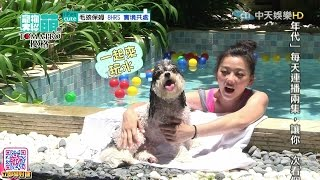 2016.07.17《寵物大聯萌》完整版 跟著萌寵一起去尋寶吧~!