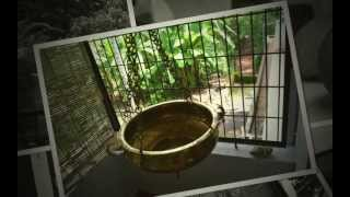 Unforgettable Homestay in Kerala, India
