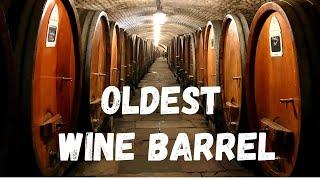 The Oldest Wine Barrel In The World | France | Malayalam Travel Vlog