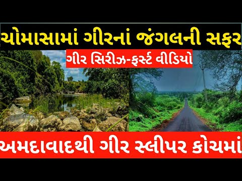 Ahmedabad to Sasan Gir National Park ।। Sasan Gir Forest Journey ।। First Visit in Sasan Gir Gujarat