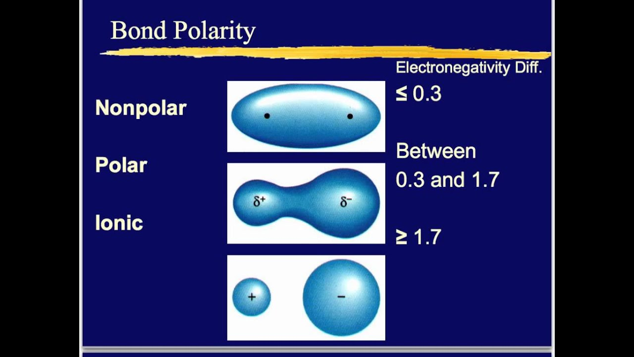 polar or nonpolar bonds Polar