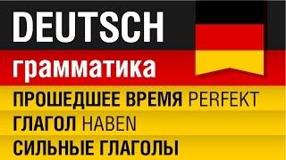 Прошедшее время перфект. Сильные глаголы. Глагол haben. Немецкий язык - Урок 9/31. Елена Шипилова.