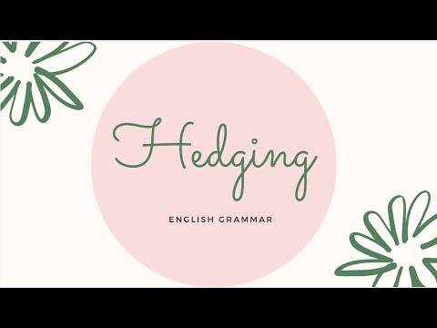 Hedging-English Grammar