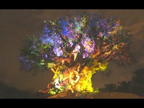 TREE OF LIFE AWAKENINGS - Full Night Show at Animal Kingdom, Disney World