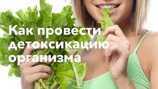 Травяные сборы, рецепты настоев, очистительные практики.  Алексей Маматов