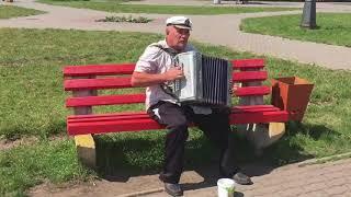 Гармонист Владимир