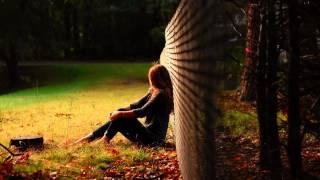 Bonobo - First Fires (Maya Jane Coles Remix)