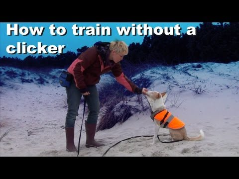 How to train without a clicker