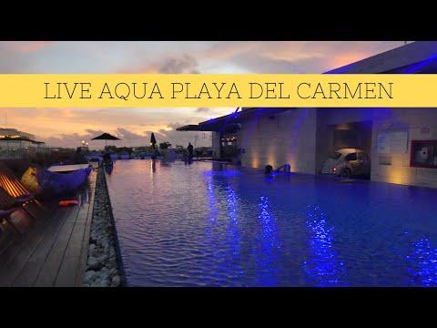 Live Aqua Playa Del Carmen Boutique All-inclusive Hotel