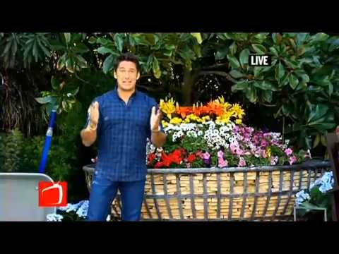 Jamie Durie - The Outdoor Room