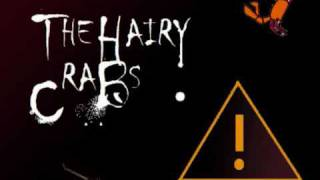 The Hairy Crabs - Drink Drank Drunk