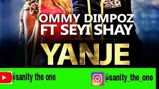 Ommy Dimpoz-Yanje ft Seyi Shae(chat lyrical video)