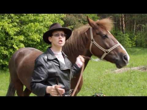 Вопрос: Как контролировать лошадь?