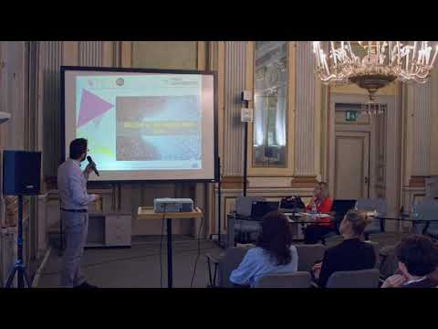 STEM4youth Project Final Conference - Project Alessandro Vitale