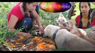 Wow Amazing Beautiful Girl Search Food With Dog    Smart & Funny Dog 