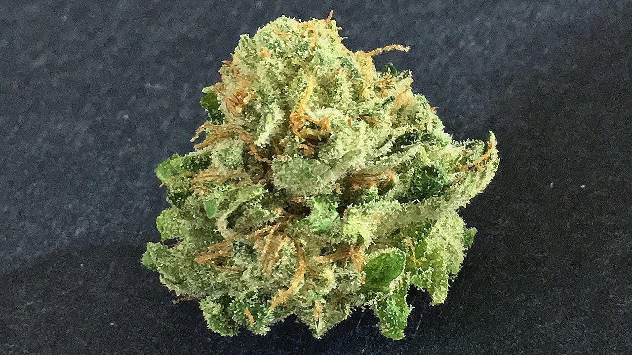 Matanuska Valley Weed