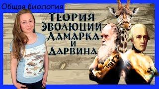 Теория эволюции Ламарка и Дарвина (сравнение). Урок биологии №70.