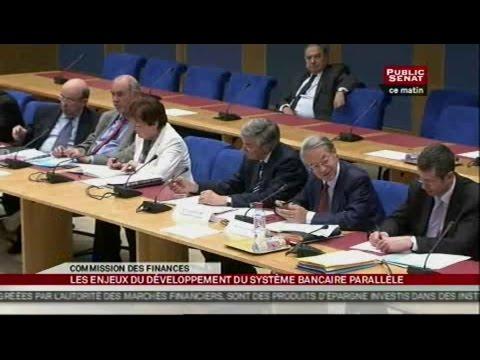 Table ronde sur les enjeux du développement du système bancaire parallèle - AUDITION (20/06/2012)
