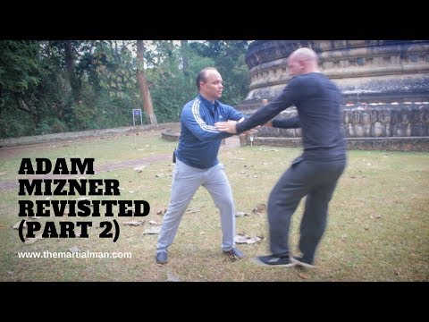 Adam Mizner Revisited (Part 2) Yang Style Taijiquan - THE MARTIAL MAN